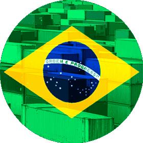 Контейнерные перевозки из Бразилии, стоимость доставки груза Украина, Россия, Беларусь, Молдова